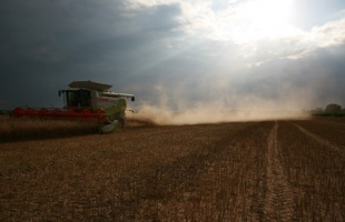 Scotland Farm - Agriculture